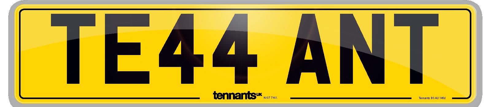 Standard rear number plate